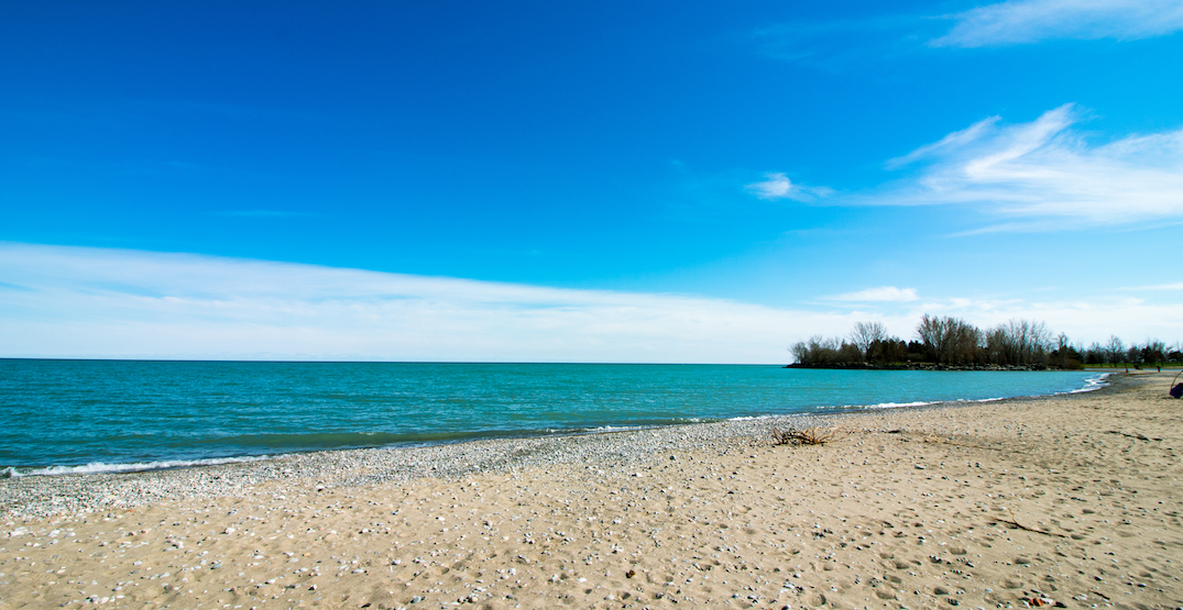 A beach club is coming to the shores of Toronto's Woodbine beach