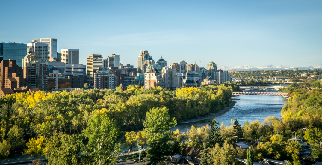 15 things to do in Calgary this weekend: August 20 to 22
