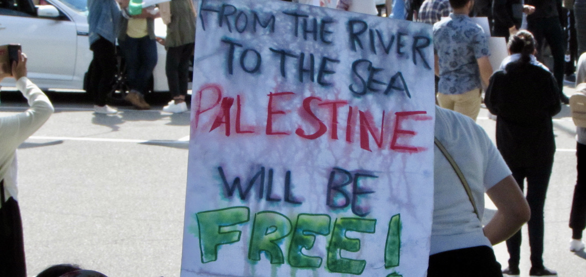 Hundreds gather for peaceful pro-Palestine protest in Surrey (PHOTOS)
