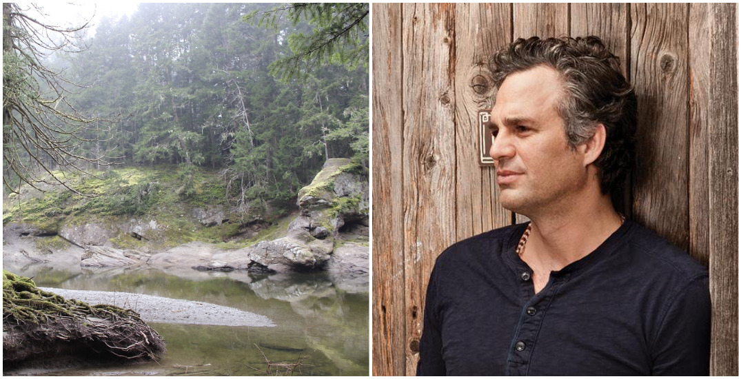 Mark Ruffalo elevates a petition to save BC's old growth forests