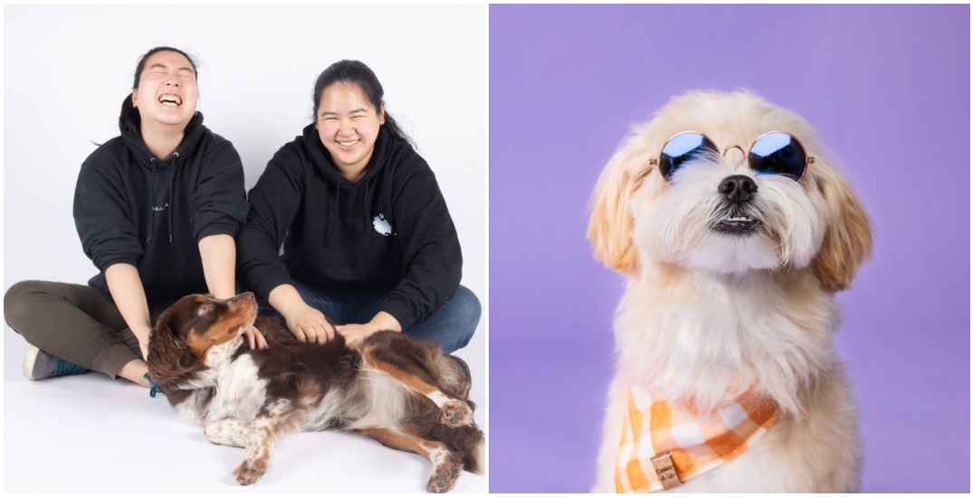 These photographers have set up a professional studio for your pets