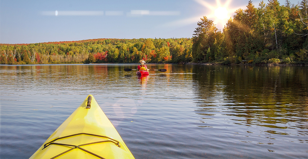 Ontario provincial parks are free on weekdays starting today
