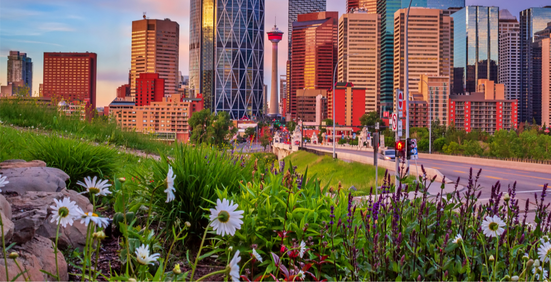 26 distanced things to do in Calgary this week: June 7 to 13