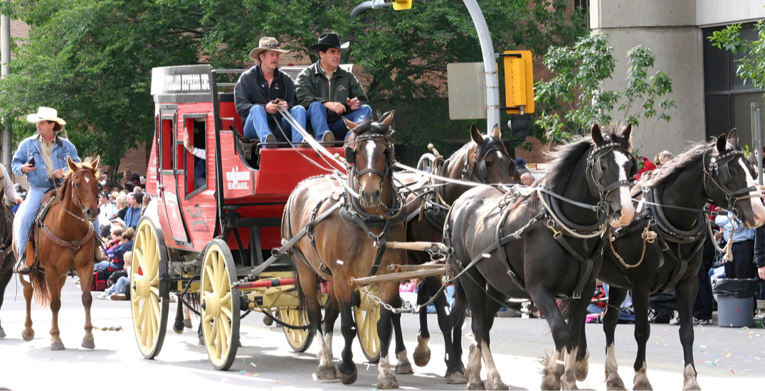 Here's what you can expect from the Calgary Stampede Parade this year