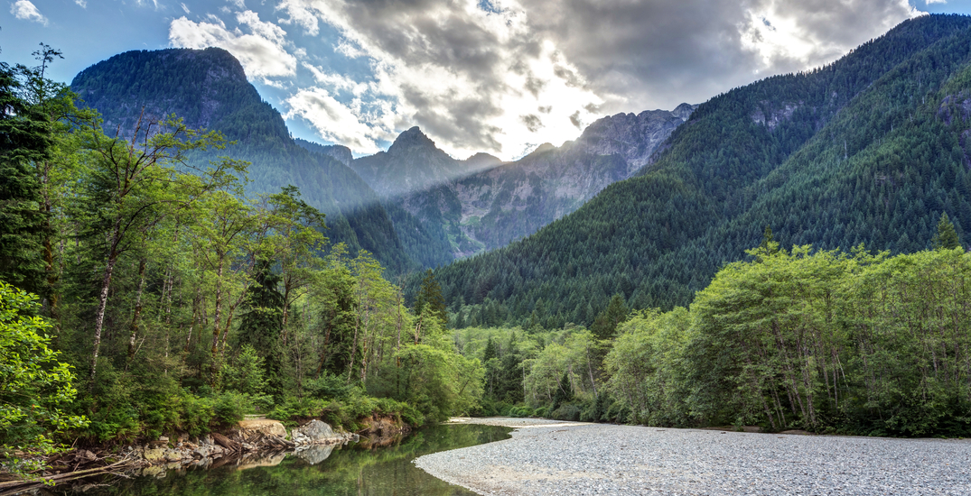 Fight between campsites at Golden Ears Provincial Park ends in stabbing