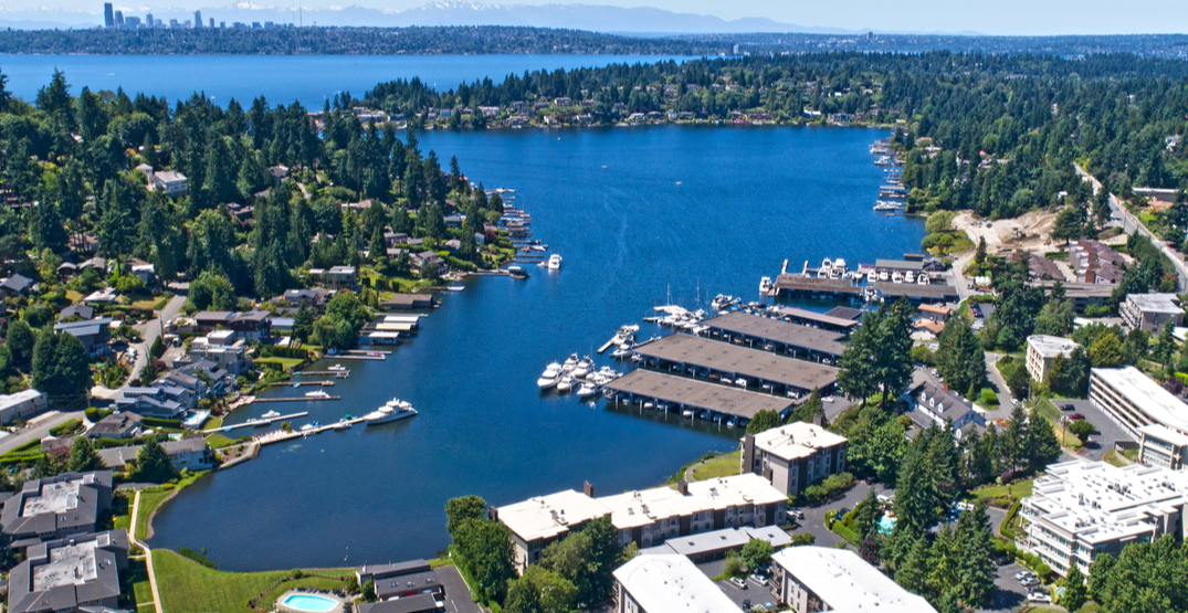 Meydenbauer Beach in Bellevue closed due to high bacteria concentrations