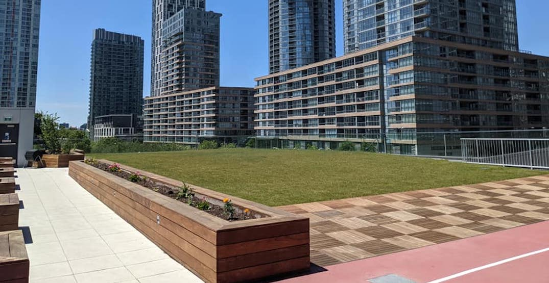 A brand new rooftop park just opened in downtown Toronto (PHOTOS)