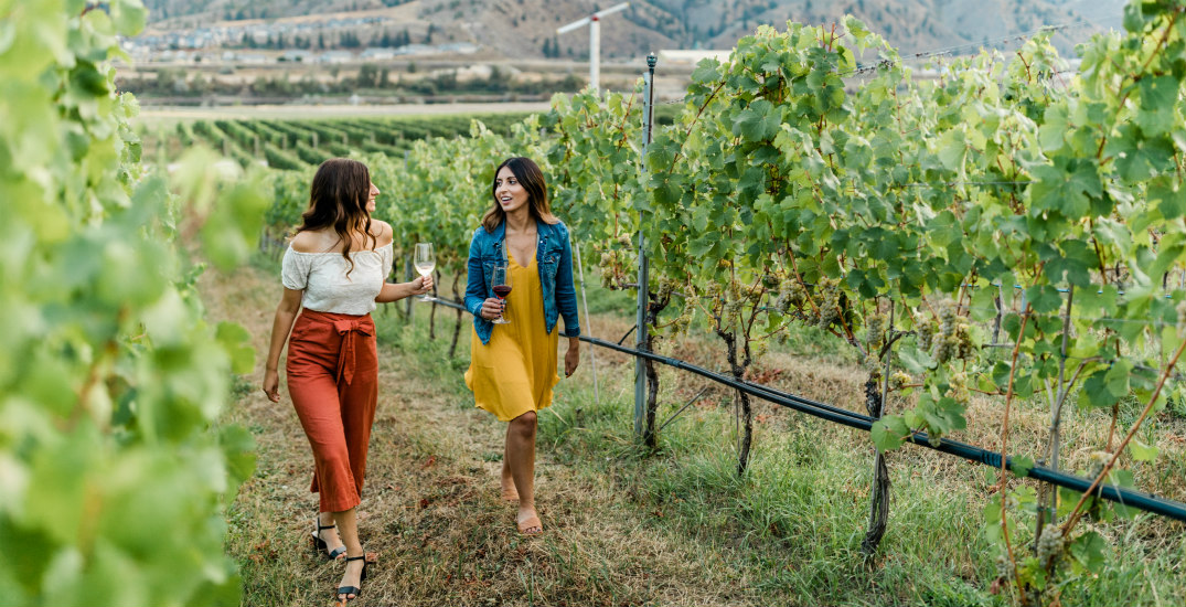 How to make the most of a three-day trip to BC's newest wine region