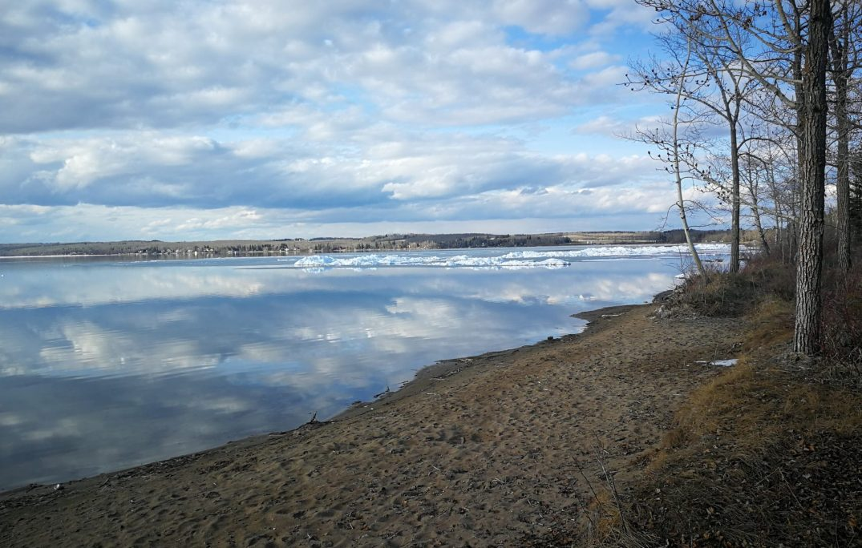 Alberta swimming