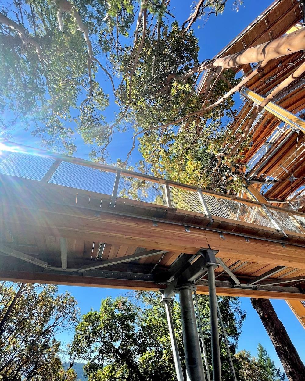 malahat skywalk construction