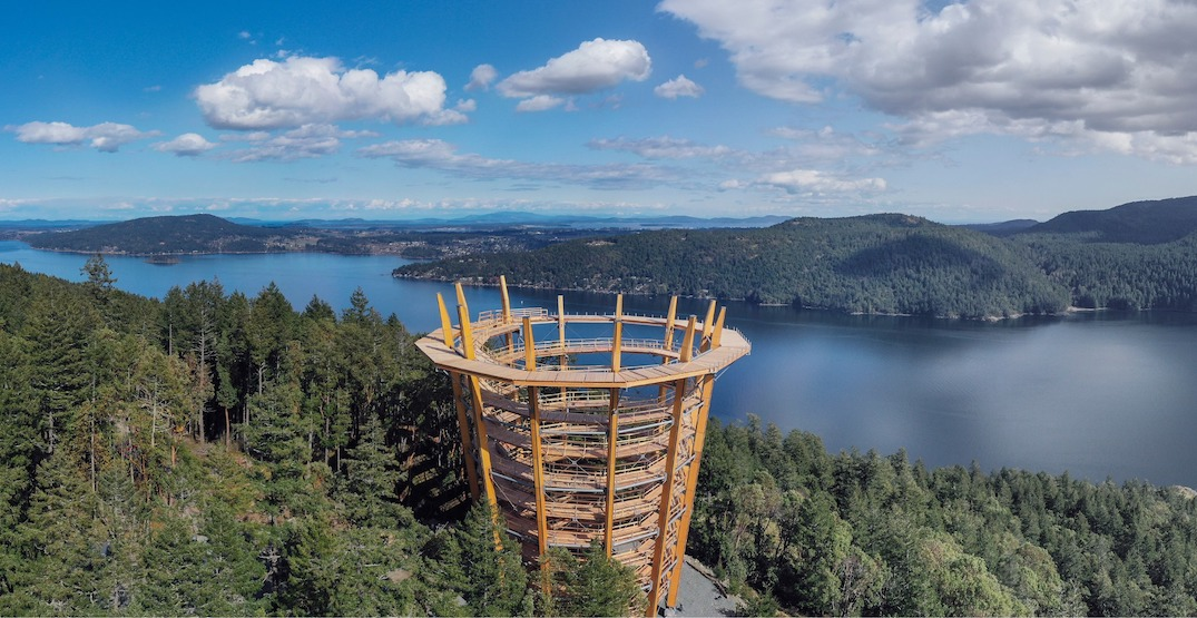 New spiral Malahat Skywalk attraction near Victoria to open this month