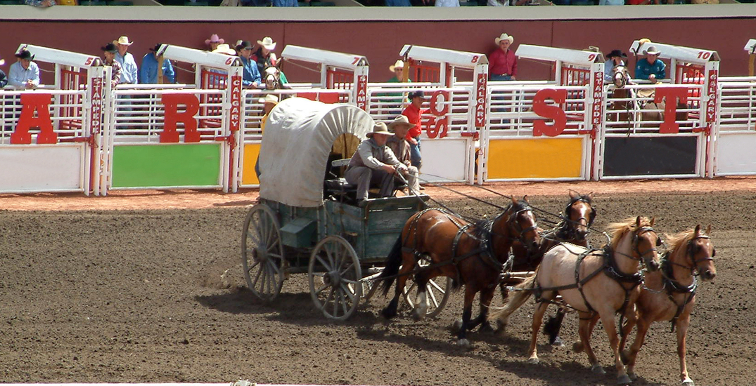 Opinion: The Calgary Stampede should drop inhumane rodeo events