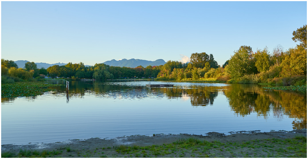 Trout Lake closed for swimming due to high E. coli levels