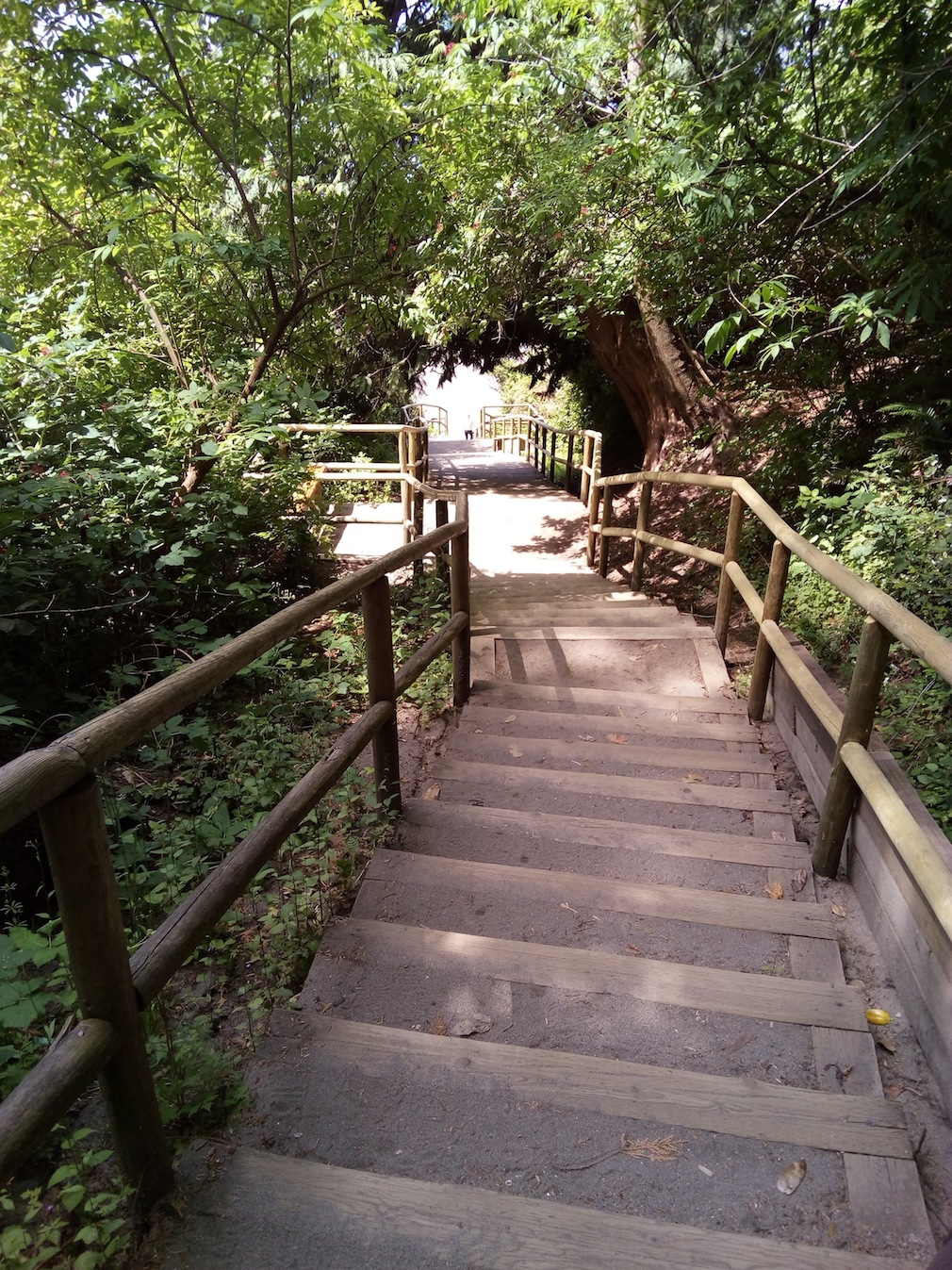Stairs to Wreck Beach