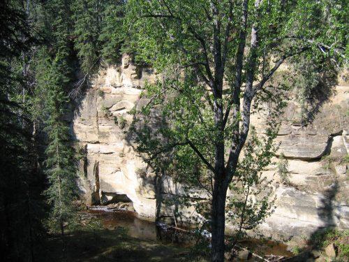 Whitecourt's canyon Edmonton