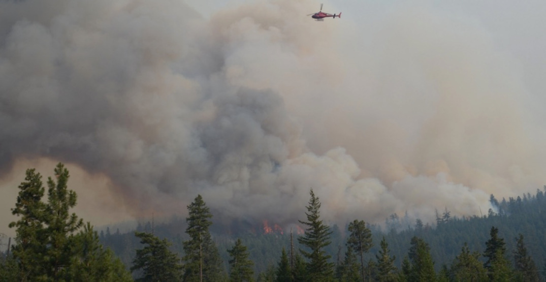 Over 300,000 hectares burned: BC wildfires by the numbers