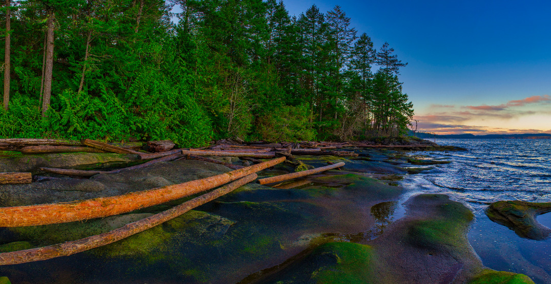 5 things you may not know about Vancouver Island