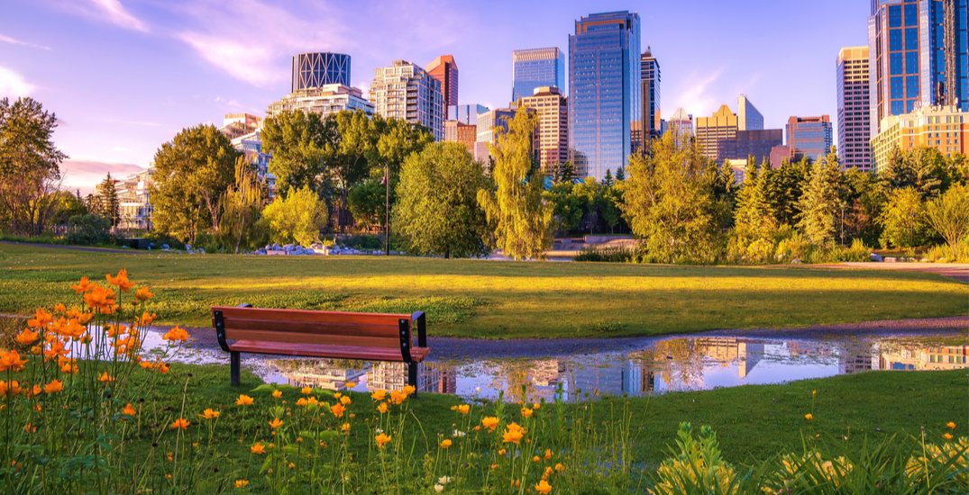 You can fly from Montreal to Calgary for under $290 roundtrip next year