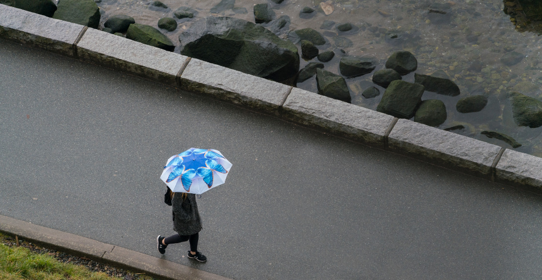 Thunderstorms in Vancouver's forecast for next two days