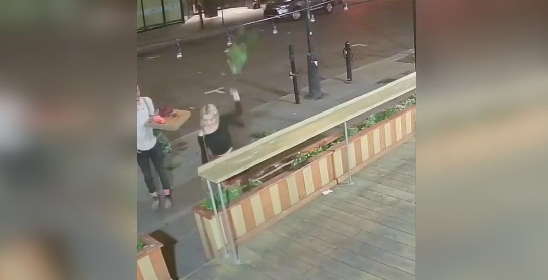 Passerby caught on camera uprooting flowers from Montreal cafe (VIDEO)