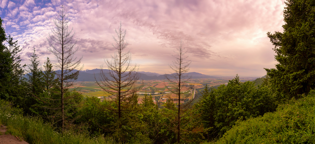 10 hidden gems to discover in Abbotsford