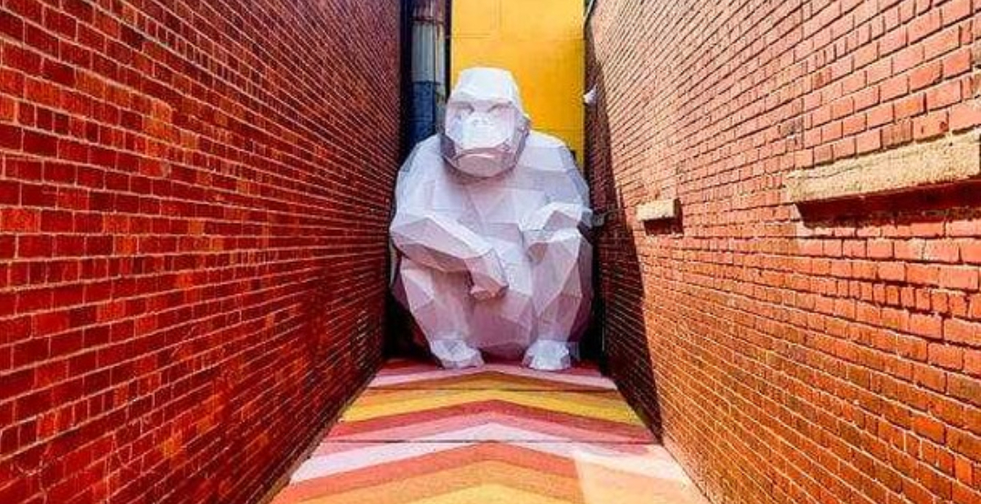 Go on a hunt and find this hidden gorilla in a Montreal ruelle (PHOTOS)