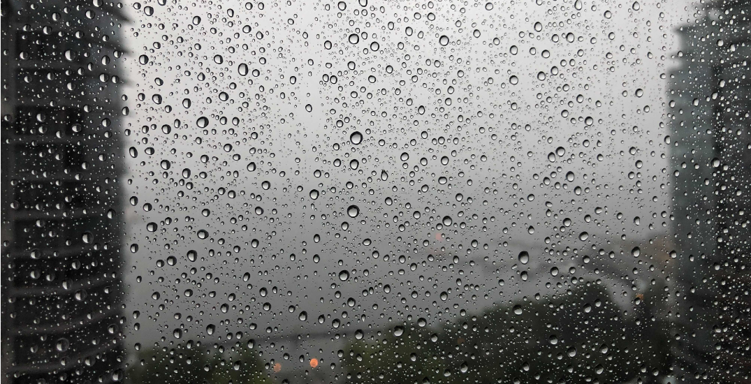 Vancouver overjoyed to see first substantial rainfall in 52 days