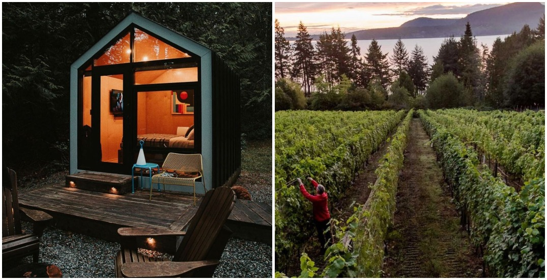 10 hidden gems to discover on Pender Island
