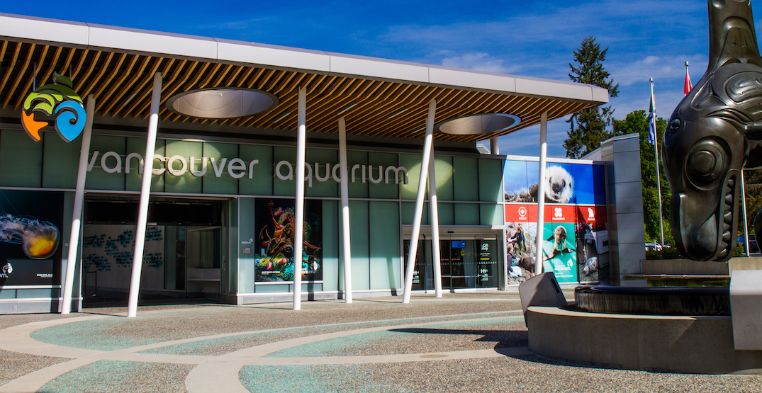 Vancouver Aquarium to reopen to public on Monday after a year of closure