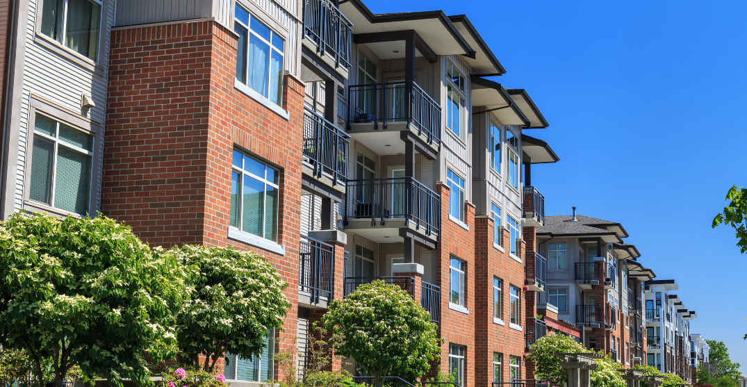 The average cost of rent in Canadian cities for August