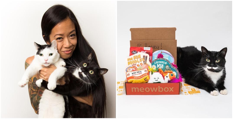 Meowbox: How a cat subscription service grew into a multimillion-dollar company