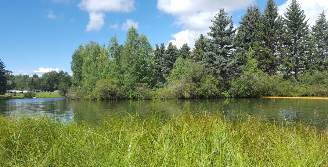 6 of Edmonton's most beautiful parks you need to explore