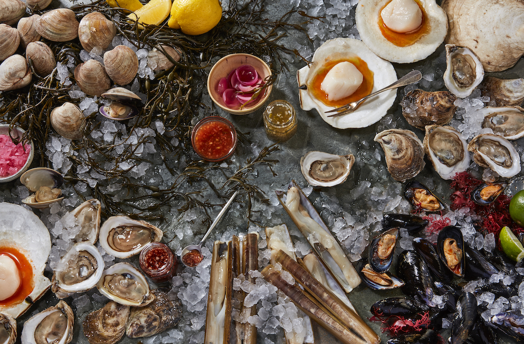 New seafood restaurant and bar coming to King Street West