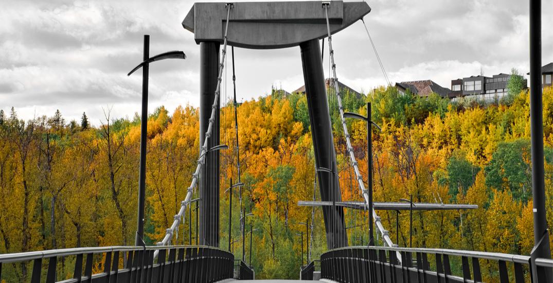 Spots Edmonton fall