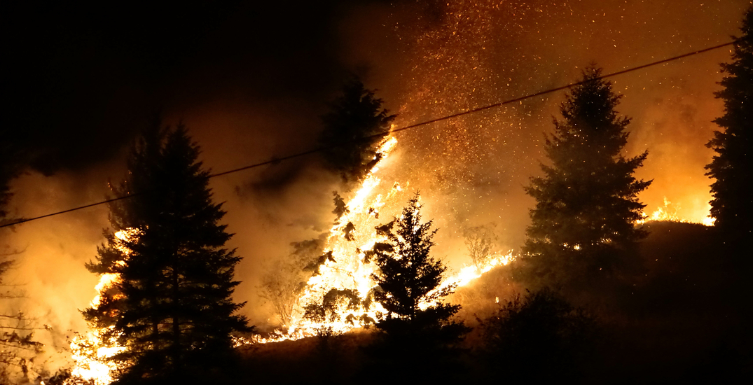 Drought, wildfires, and heat bring environment issues to campaign trail