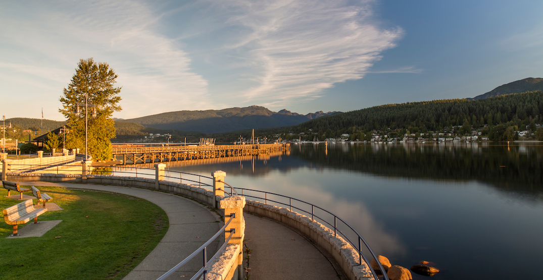 Easy exploring: The best things to do in Port Moody right now