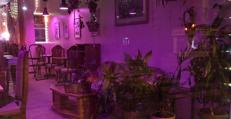 Toronto vegan restaurant is transforming into the ultimate hangout spot