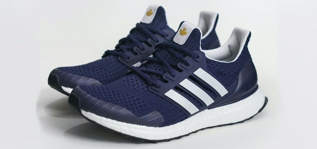 adidas terry fox dna shoes
