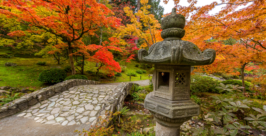 12 places in Seattle perfect for scenic autumn walks