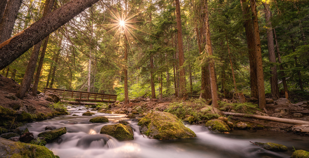 7 places in Portland perfect for scenic walks this fall
