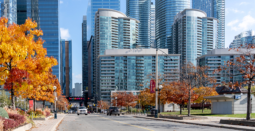 Fall forecast: Toronto is in for a warm and pleasant autumn