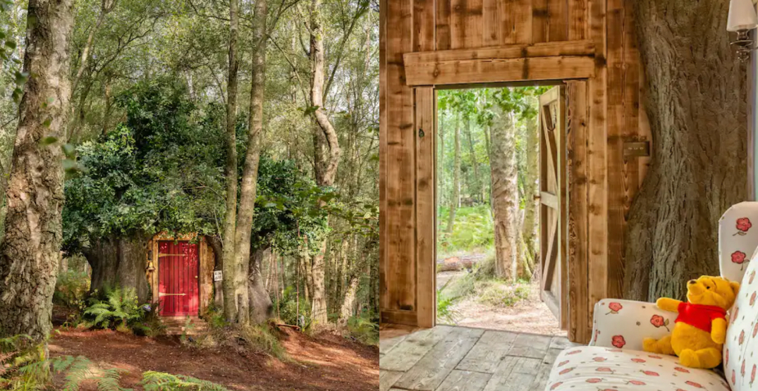 Winnie the Pooh-inspired 'Bearbnb' in the UK is a Disney travel dream come true