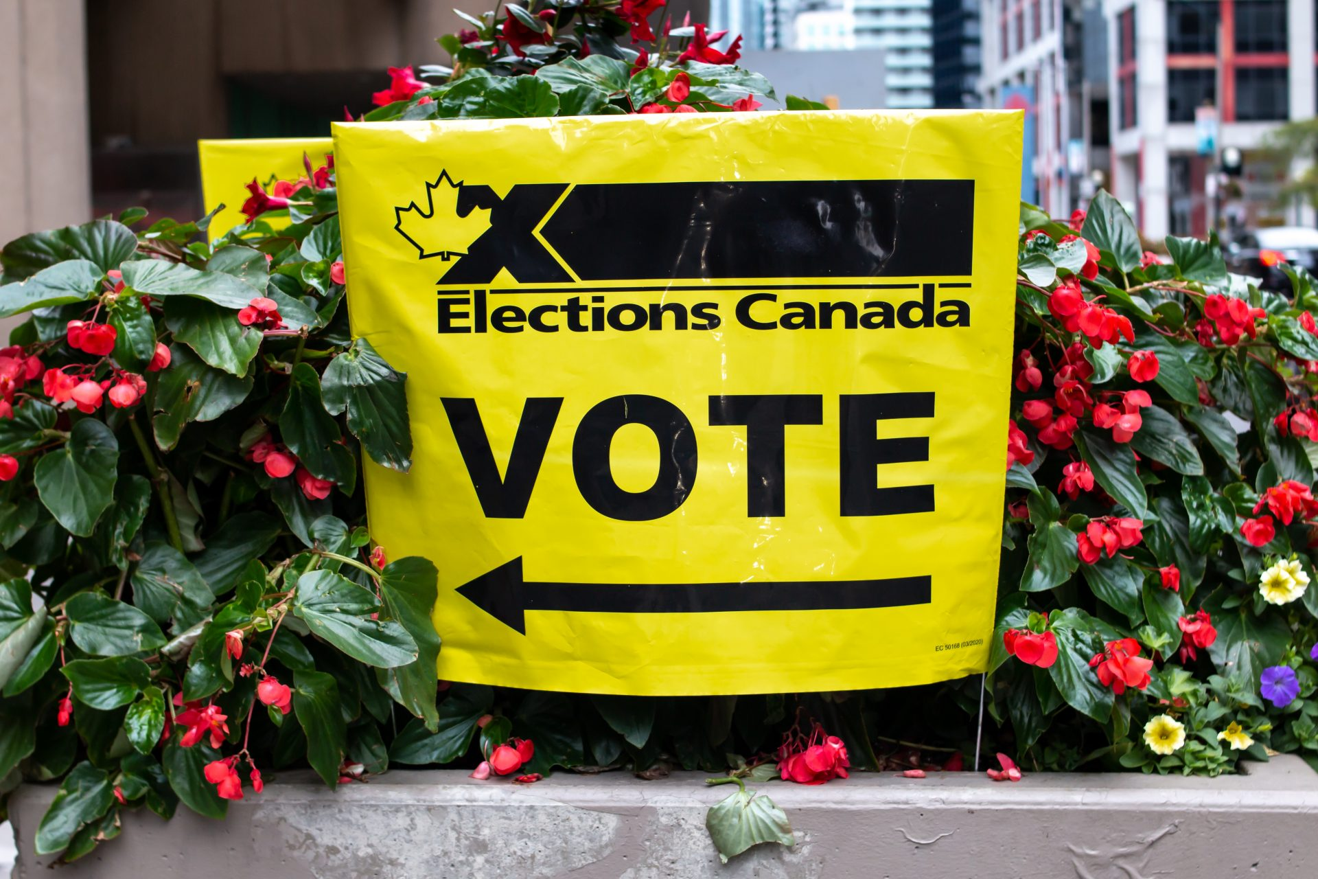 How to vote today in Canada's federal election