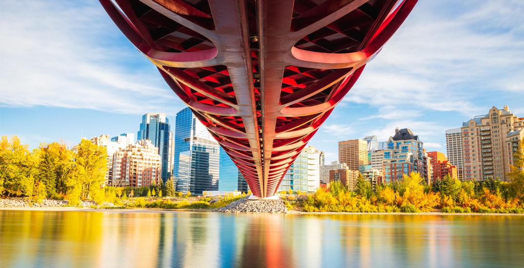 14 things to do in Calgary this week: October 11 to 17