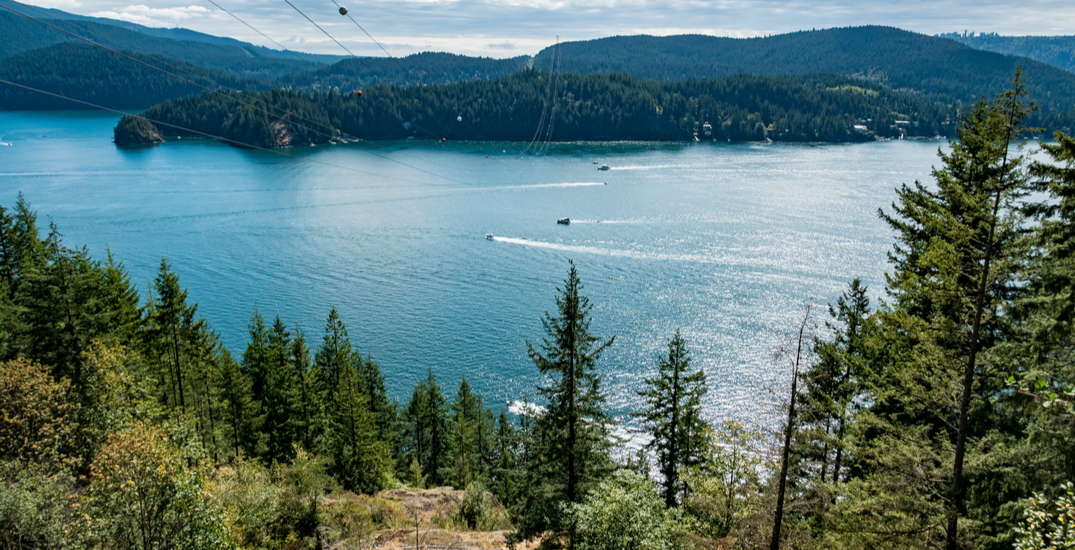 Easy exploring: The best things to do in Deep Cove