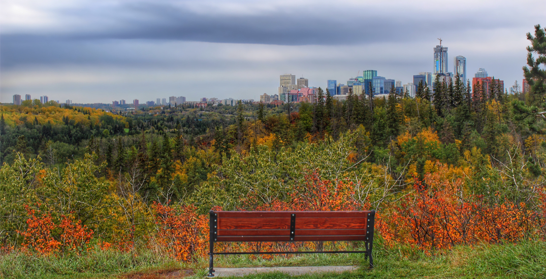 7 things to do this weekend in Edmonton: October 1 to October 3