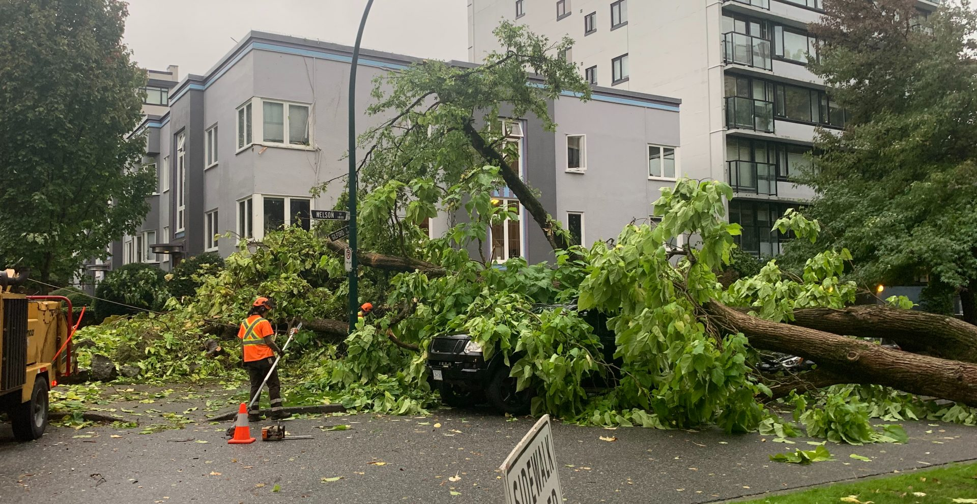 A tree crashed through a window in the West End after heavy storm (PHOTOS)