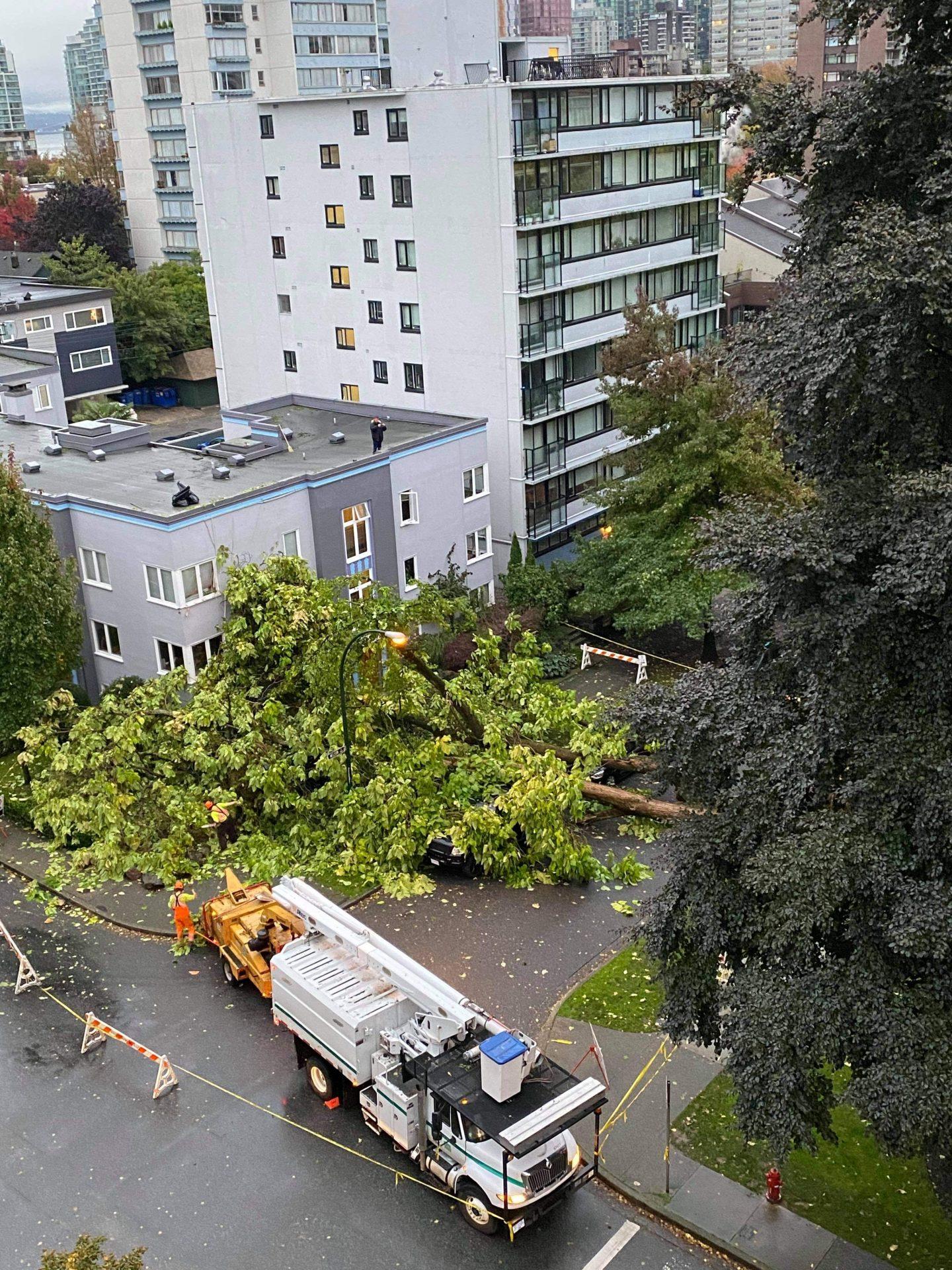 Vancouver wind storm