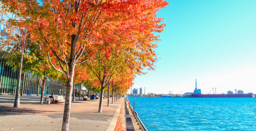 Welcome, October: It's going to feel like 31°C in Toronto tomorrow