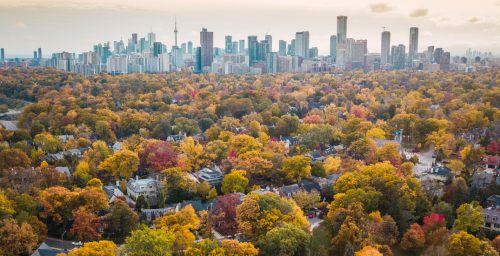 Here's what's open and closed in Toronto on Thanksgiving | News